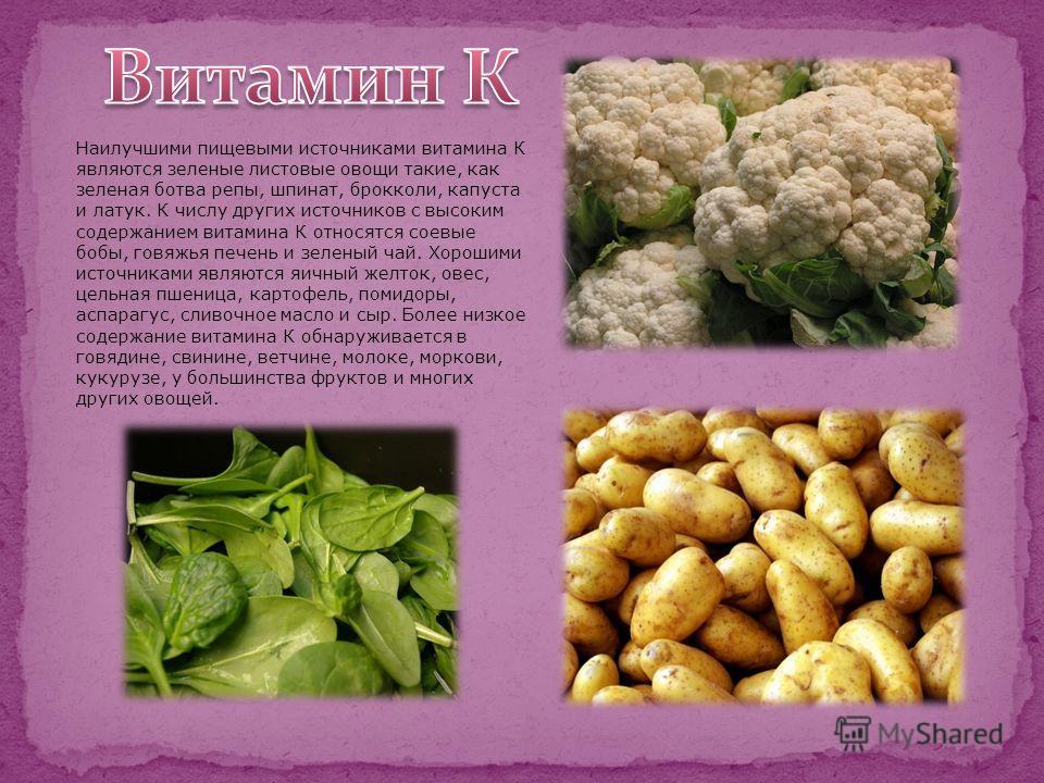 Наилучшими пищевыми источниками витамина К являются зеленые листовые овощи такие, как зеленая ботва репы, шпинат, брокколи, капуста и латук. К числу других источников с высоким содержанием витамина К относятся соевые бобы, говяжья печень и зеленый ча