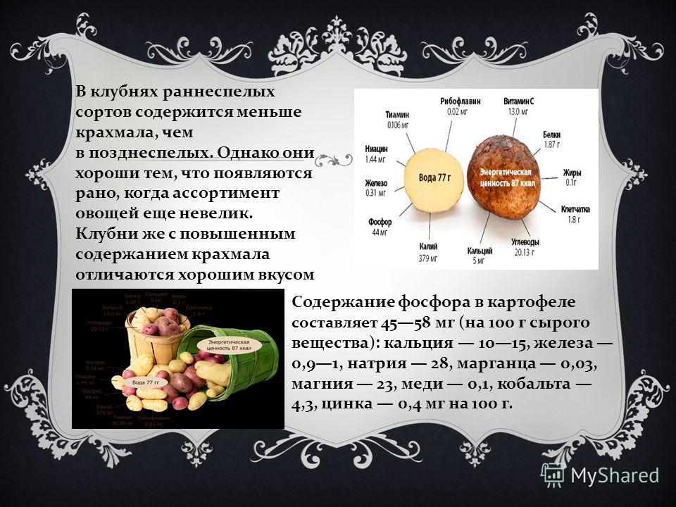 В клубнях раннеспелых сортов содержится меньше крахмала, чем в позднеспелых. Однако они хороши тем, что появляются рано, когда ассортимент овощей еще невелик. Клубни же с повышенным содержанием крахмала отличаются хорошим вкусом Содержание фосфора в