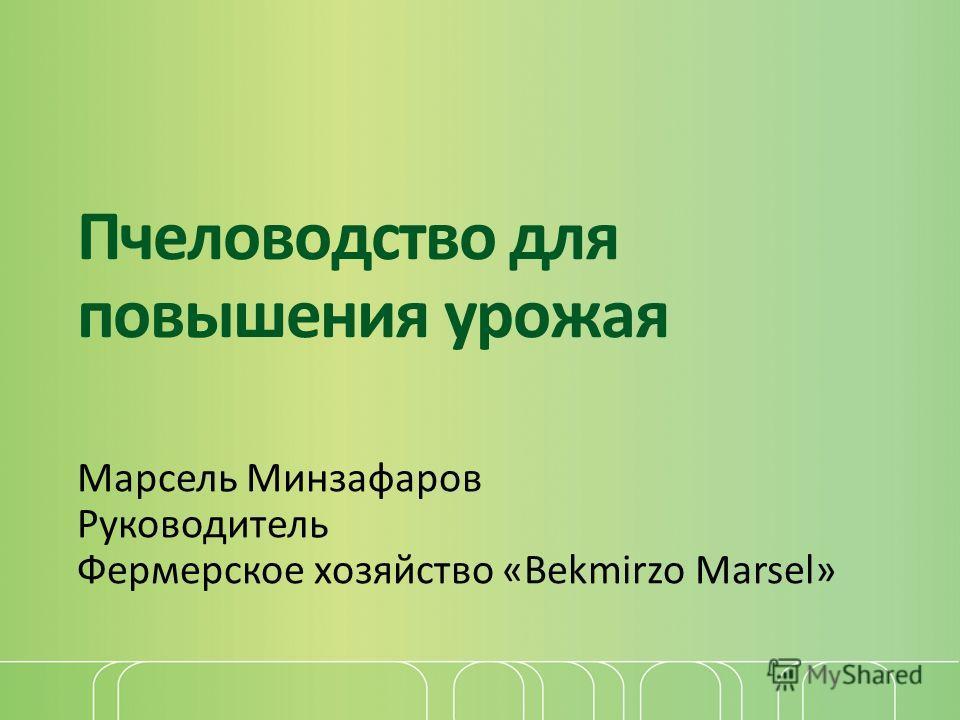 Пчеловодство для повышения урожая Марсель Минзафаров Руководитель Фермерское хозяйство «Bekmirzo Marsel»