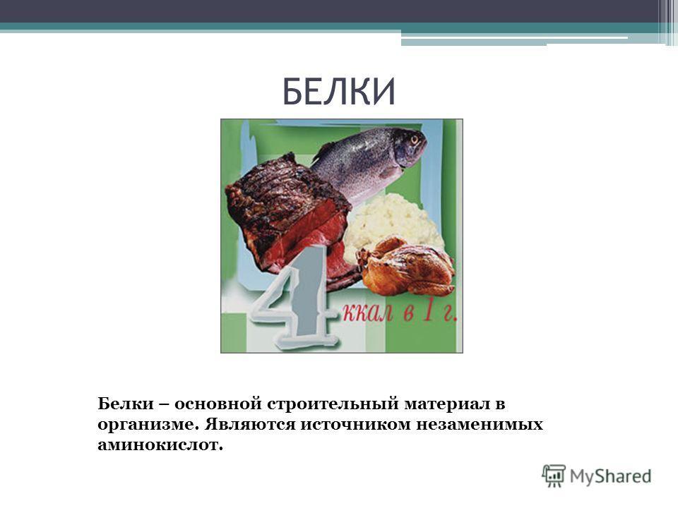 БЕЛКИ Белки – основной строительный материал в организме. Являются источником незаменимых аминокислот.