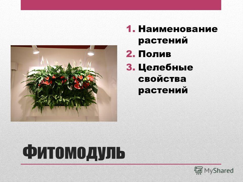 Фитомодуль 1.Наименование растений 2.Полив 3.Целебные свойства растений