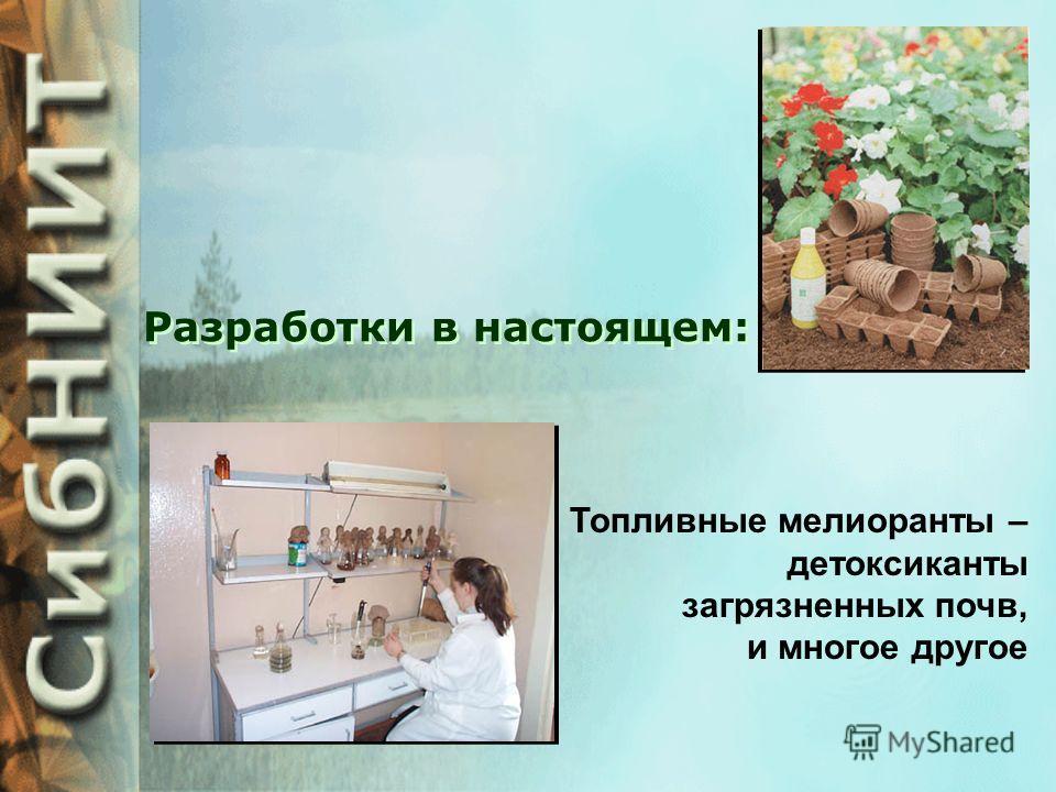 Разработки в настоящем: Биологически активные торфяные субстраты для овощеводства, цветоводства и огородничества Поверхностно-активные вещества для дезактивации радиационных загрязнений