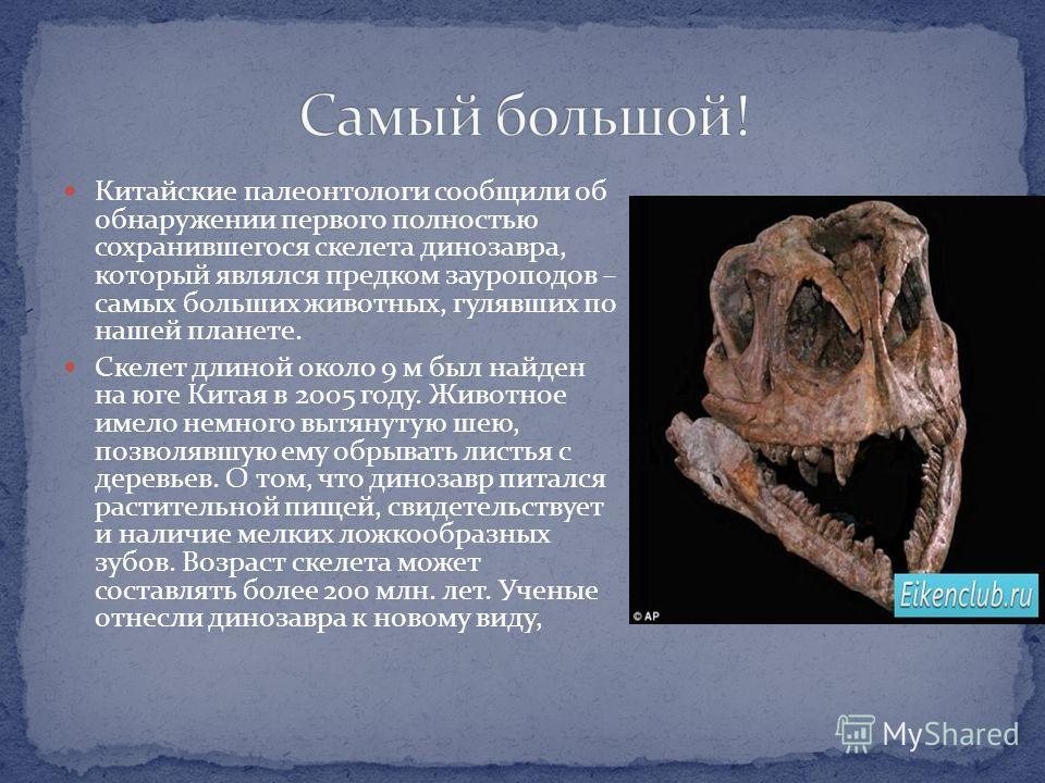 Китайские палеонтологи сообщили об обнаружении первого полностью сохранившегося скелета динозавра, который являлся предком зауроподов – самых больших животных, гулявших по нашей планете. Скелет длиной около 9 м был найден на юге Китая в 2005 году. Жи