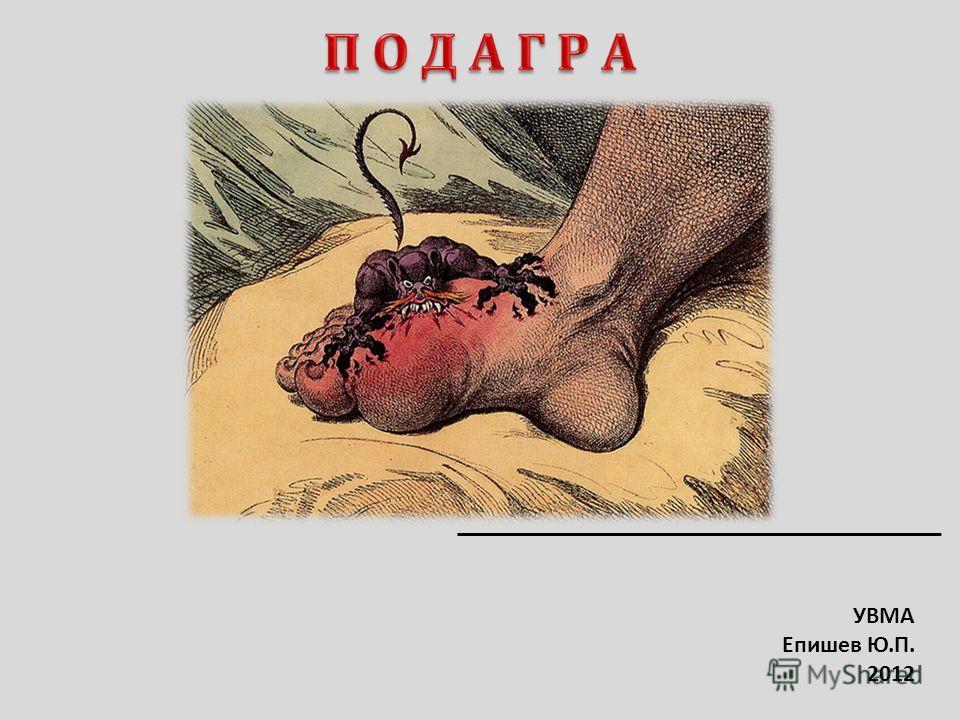 УВМА Епишев Ю.П. 2012
