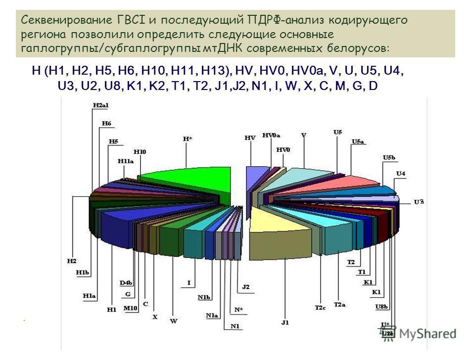 Секвенирование ГВСI и последующий ПДРФ-анализ кодирующего региона позволили определить следующие основные гаплогруппы/субгаплогруппы мтДНК современных белорусов: H (H1, H2, H5, H6, H10, H11, H13), HV, HV0, HV0a, V, U, U5, U4, U3, U2, U8, K1, K2, T1,