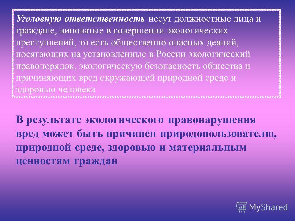 Уголовную ответственность несут должностные лица и граждане, виноватые в совершении экологических преступлений, то есть общественно опасных деяний, посягающих на установленные в России экологический правопорядок, экологическую безопасность общества и