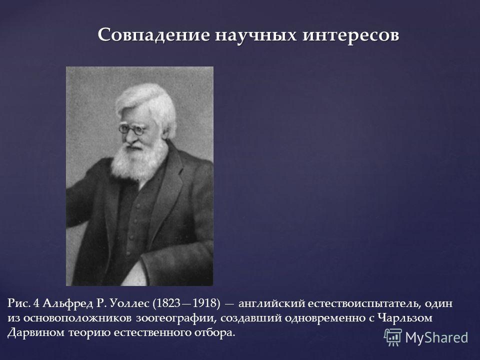 Рис. 4 Альфред Р. Уоллес (18231918) английский естествоиспытатель, один из основоположников зоогеографии, создавший одновременно с Чарльзом Дарвином теорию естественного отбора. Совпадение научных интересов
