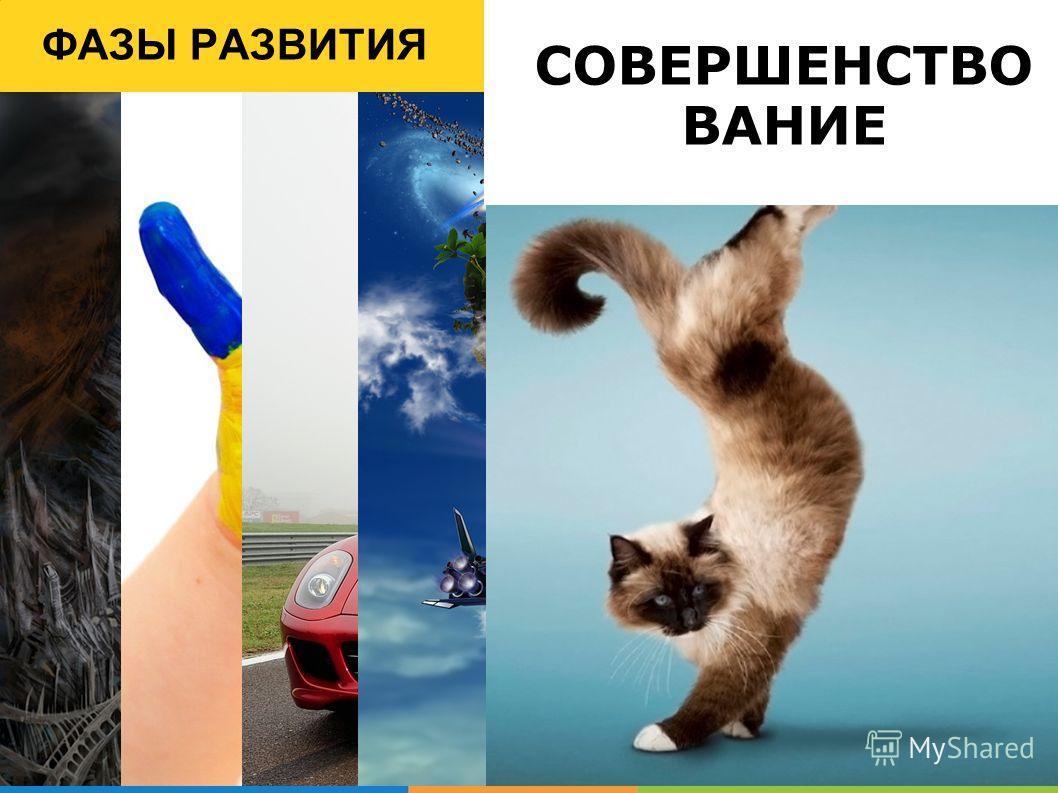 ФАЗЫ РАЗВИТИЯ СОВЕРШЕНСТВО ВАНИЕ