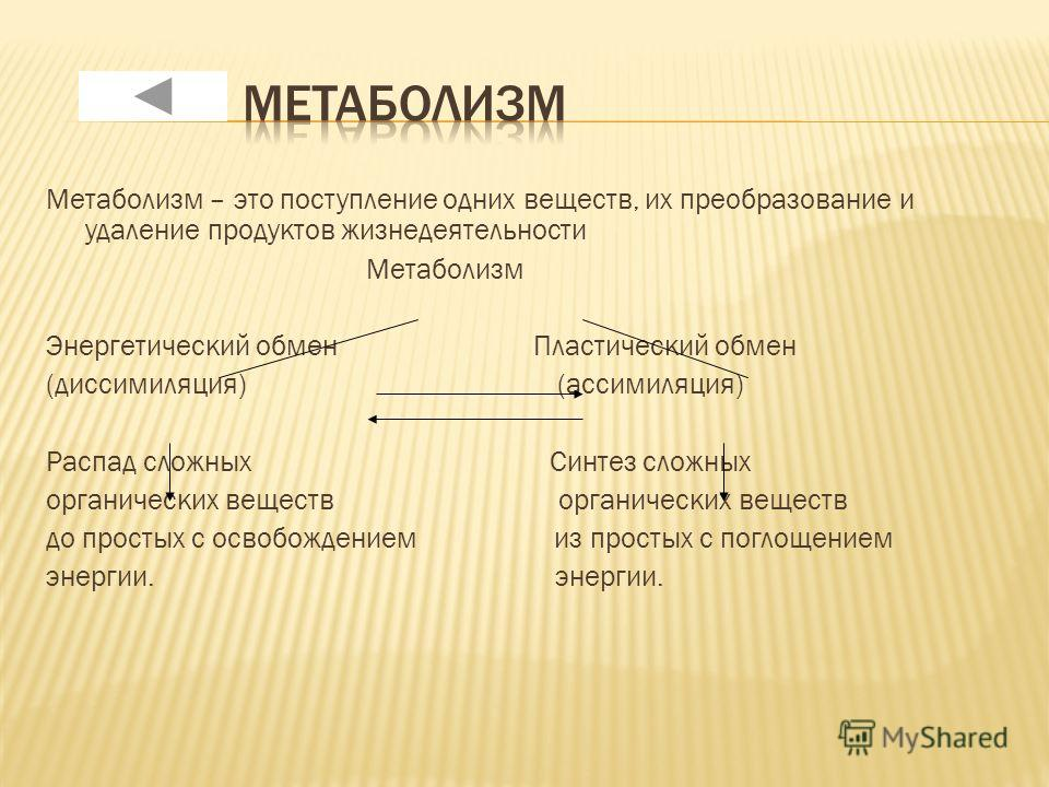 Метаболизм – это поступление одних веществ, их преобразование и удаление продуктов жизнедеятельности Метаболизм Энергетический обмен Пластический обмен (диссимиляция) (ассимиляция) Распад сложных Синтез сложных органических веществ до простых с освоб