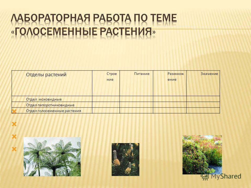 Отделы растений Строе ние Питание Размнож ение Значение Отдел моховидные Отдел папоротниковидные Отдел голосеменные растения