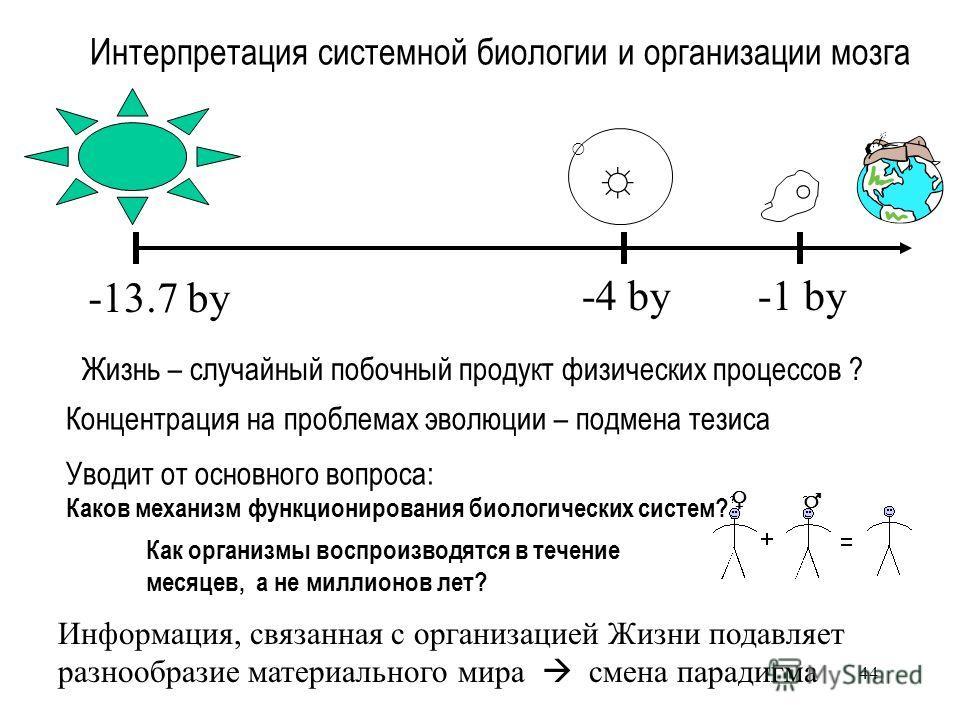 44 Интерпретация системной биологии и организации мозга -13.7 by -1 by-4 by Жизнь – случайный побочный продукт физических процессов ? Концентрация на проблемах эволюции – подмена тезиса Уводит от основного вопроса: Каков механизм функционирования био