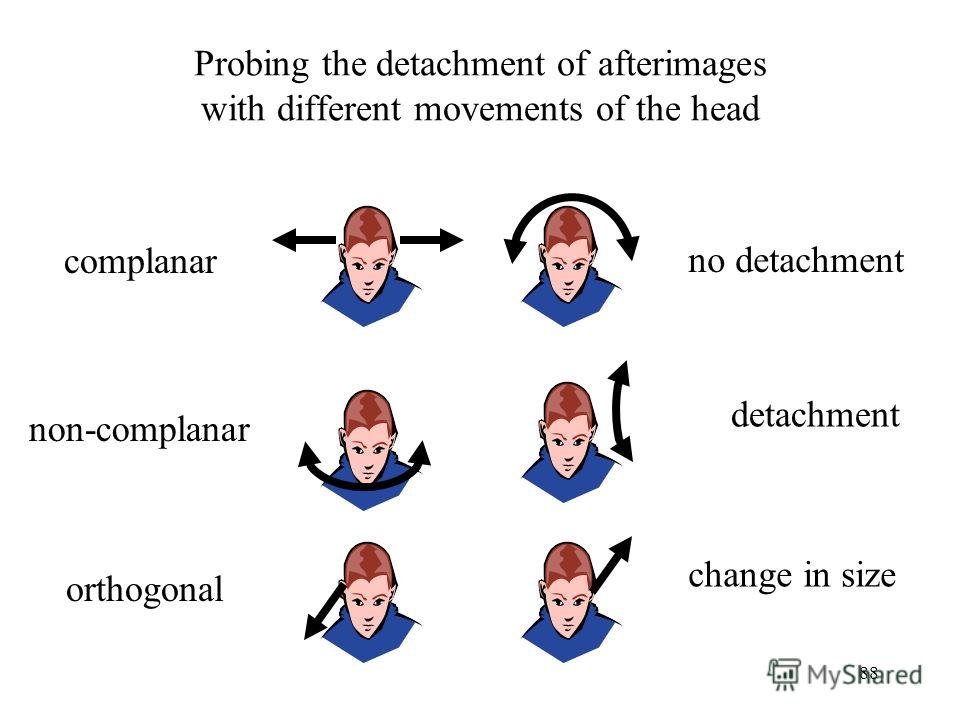 88 Probing the detachment of afterimages with different movements of the head complanar non-complanar orthogonal no detachment detachment change in size