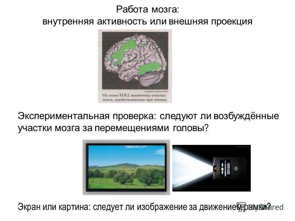 92 Работа мозга : внутренняя активность или внешняя проекция Экран или картина: следует ли изображение за движением рамки? Экспериментальная проверка : следуют ли возбуждённые участки мозга за перемещениями головы ?