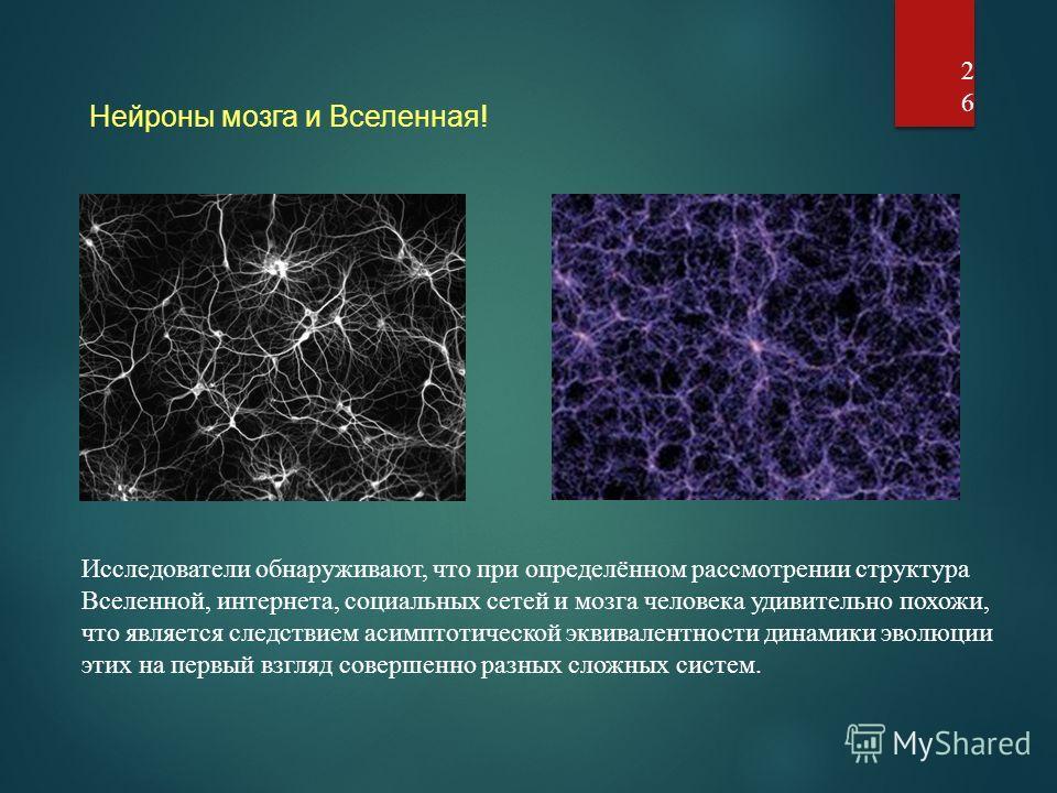 26 Исследователи обнаруживают, что при определённом рассмотрении структура Вселенной, интернета, социальных сетей и мозга человека удивительно похожи, что является следствием асимптотической эквивалентности динамики эволюции этих на первый взгляд сов