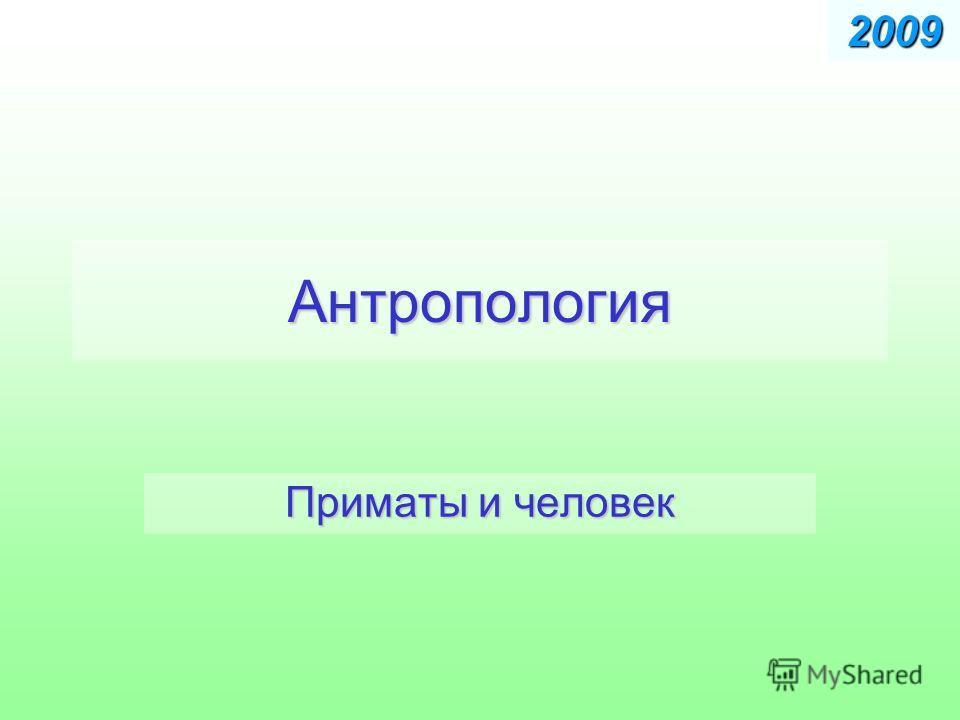 Антропология Приматы и человек 2009