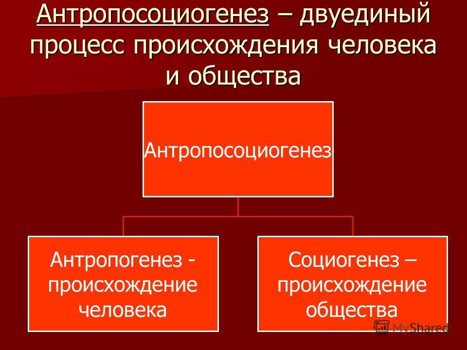 Антропосоциогенез – двуединый процесс происхождения человека и общества Антропосоциогенез Антропогенез - происхождение человека Социогенез – происхождение общества