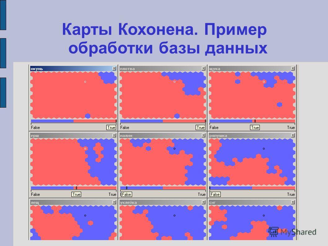 Карты Кохонена. Пример обработки базы данных