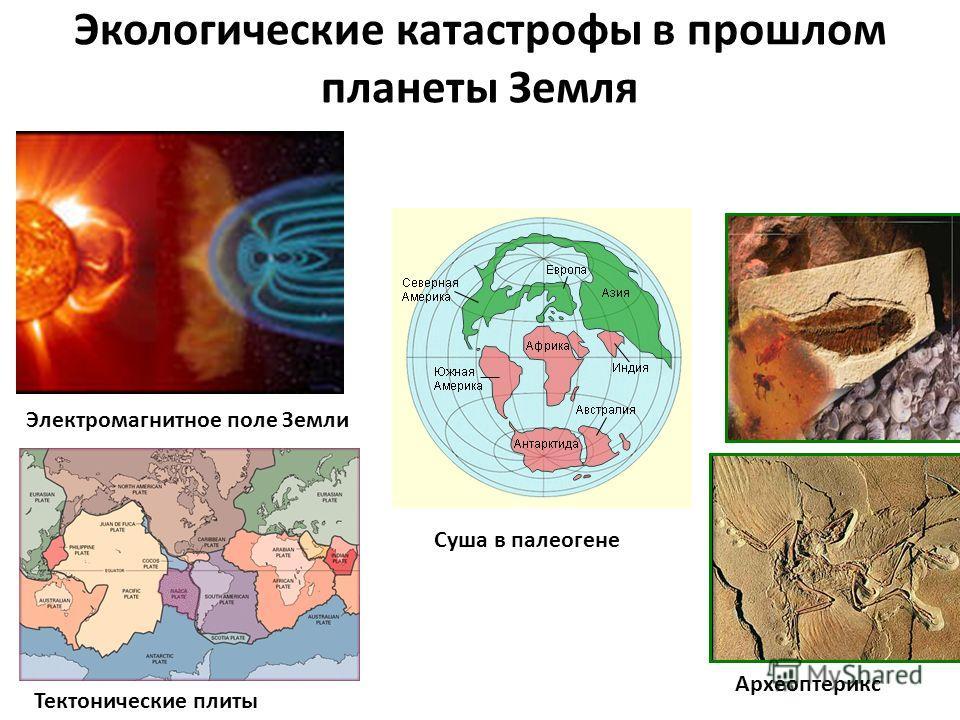Экологические катастрофы в прошлом планеты Земля Электромагнитное поле Земли Тектонические плиты Суша в палеогене Археоптерикс