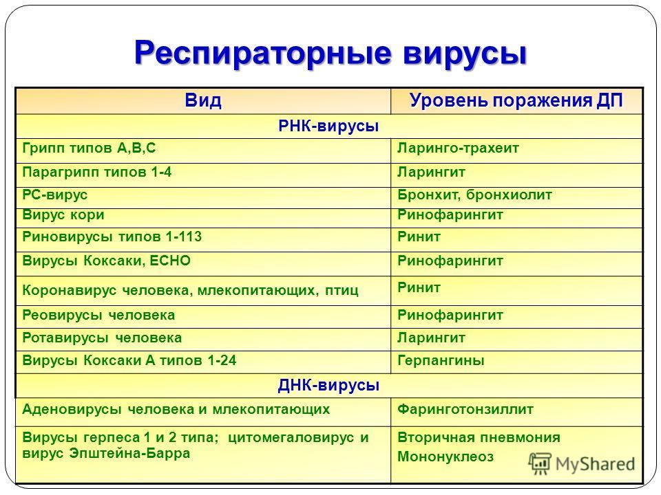 JghtВид Уровень поражения ДП РНК-вирусы Грипп типов А,В,СЛаринго-трахеит Парагрипп типов 1-4Ларингит РС-вирусБронхит, бронхиолит Вирус кориРинофарингит Риновирусы типов 1-113Ринит Вирусы Коксаки, ECHOРинофарингит Коронавирус человека, млекопитающих,