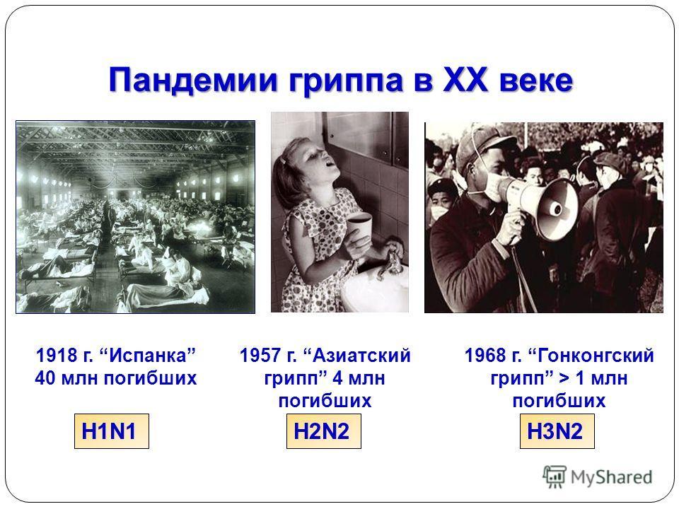 Пандемии гриппа в ХХ веке H1N1H2N2H3N2 1918 г. Испанка 40 млн погибших 1957 г. Азиатский грипп 4 млн погибших 1968 г. Гонконгский грипп > 1 млн погибших