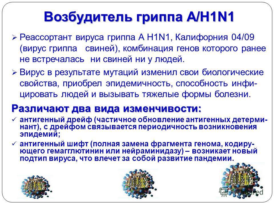 Возбудитель гриппа А/H1N1 Реассортант вируса гриппа А H1N1, Калифорния 04/09 (вирус гриппа свиней), комбинация генов которого ранее не встречалась ни свиней ни у людей. Вирус в результате мутаций изменил свои биологические свойства, приобрел эпидемич