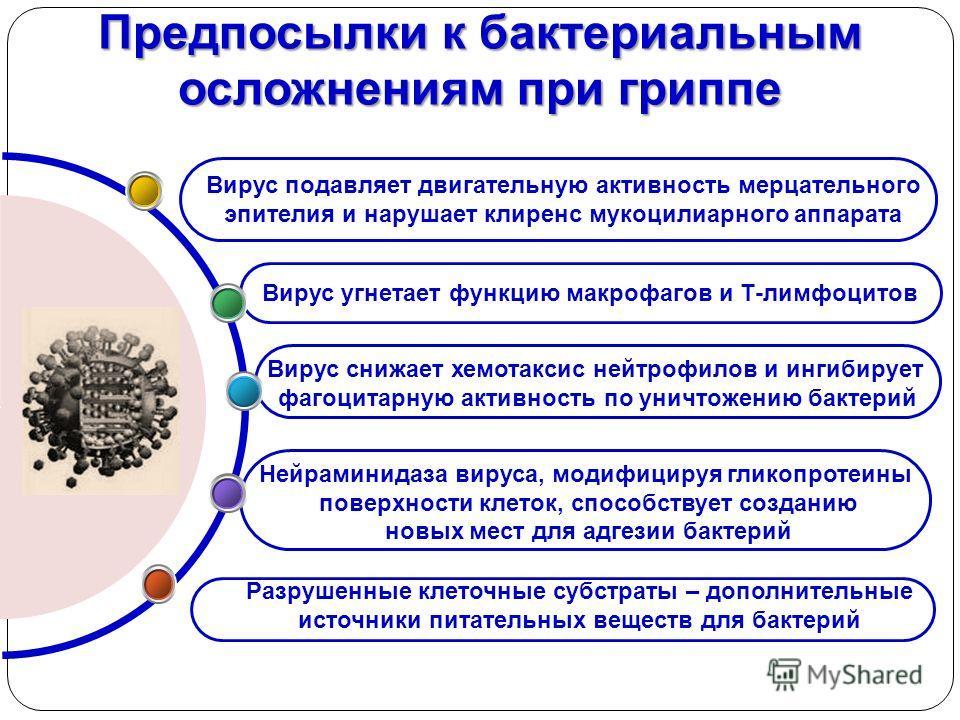 Предпосылки к бактериальным осложнениям при гриппе Нейраминидаза вируса, модифицируя гликопротеины поверхности клеток, способствует созданию новых мест для адгезии бактерий Вирус снижает хемотаксис нейтрофилов и ингибирует фагоцитарную активность по