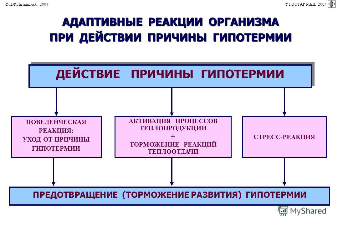 АКТИВАЦИЯ ПРОЦЕССОВ ТЕПЛОПРОДУКЦИИ + ТОРМОЖЕНИЕ РЕАКЦИЙ ТЕПЛООТДАЧИ ПОВЕДЕНЧЕСКАЯ РЕАКЦИЯ: УХОД ОТ ПРИЧИНЫ ГИПОТЕРМИИ СТРЕСС-РЕАКЦИЯ АДАПТИВНЫЕ РЕАКЦИИ ОРГАНИЗМА ПРИ ДЕЙСТВИИ ПРИЧИНЫ ГИПОТЕРМИИ ДЕЙСТВИЕ ПРИЧИНЫ ГИПОТЕРМИИ ПРЕДОТВРАЩЕНИЕ (ТОРМОЖЕНИЕ Р