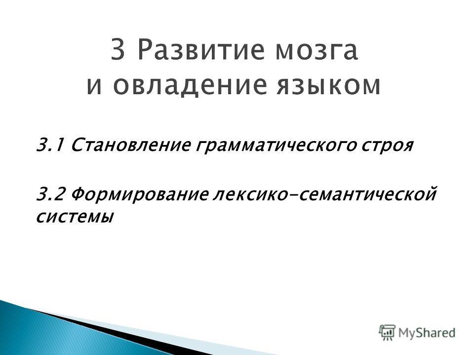 3.1 Становление грамматического строя 3.2 Формирование лексико-семантической системы