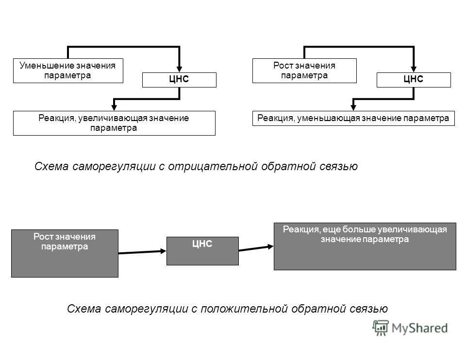 Схема саморегуляции с отрицательной обратной связью Рост значения параметра Уменьшение значения параметра ЦНС Реакция, увеличивающая значение параметра Реакция, уменьшающая значение параметра Рост значения параметра ЦНС Реакция, еще больше увеличиваю