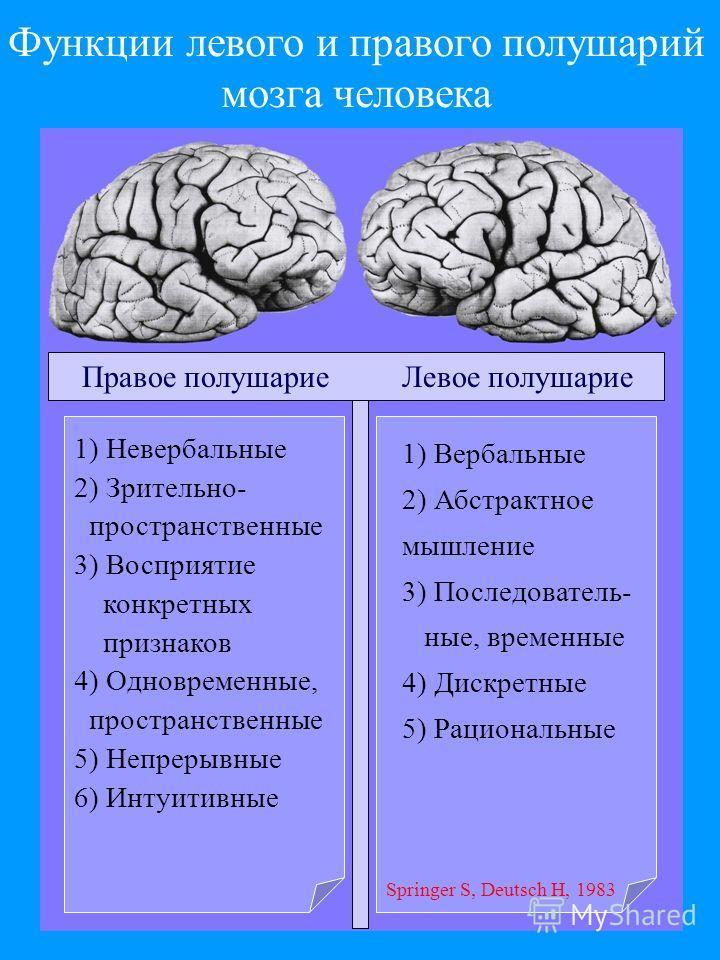 Функции левого и правого полушарий мозга человека Правое полушариеЛевое полушарие 1) Вербальные 2) Абстрактное мышление 3) Последователь- ные, временные 4) Дискретные 5) Рациональные 1) Невербальные 2) Зрительно- пространственные 3) Восприятие конкре