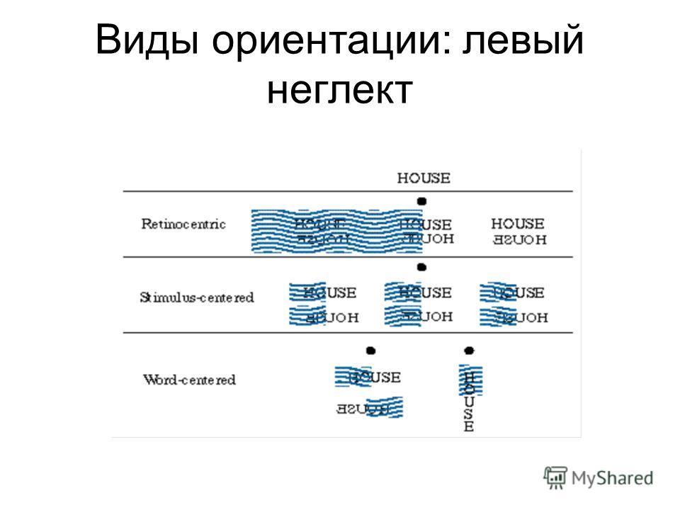 Виды ориентации: левый неглект