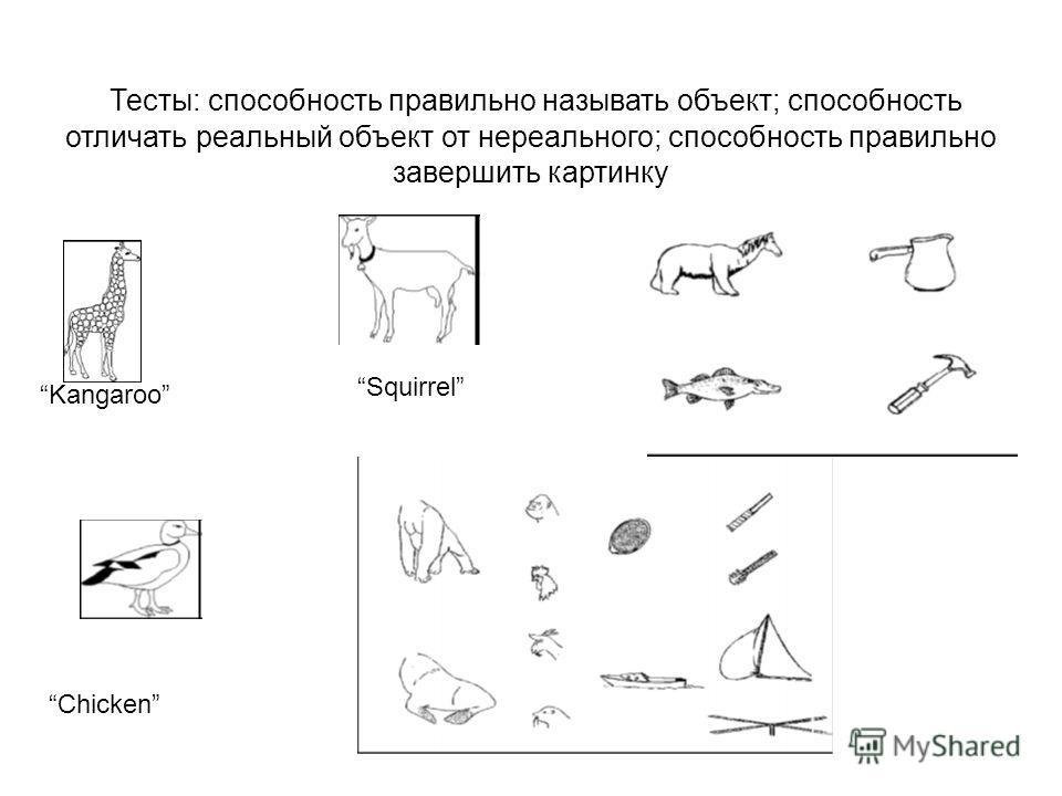Тесты: способность правильно называть объект; способность отличать реальный объект от нереального; способность правильно завершить картинку Kangaroo Chicken Squirrel