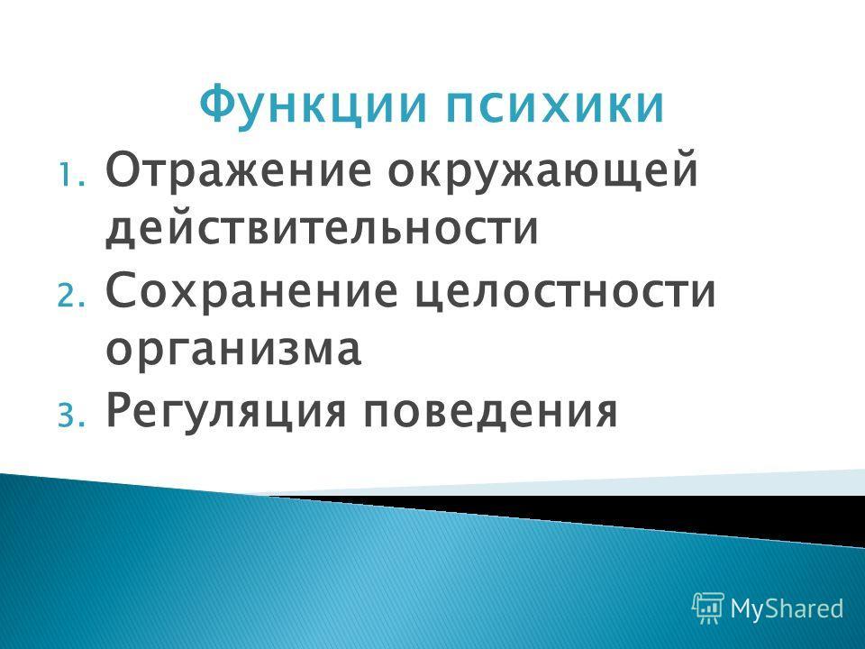 Функции психики 1. Отражение окружающей действительности 2. Сохранение целостности организма 3. Регуляция поведения
