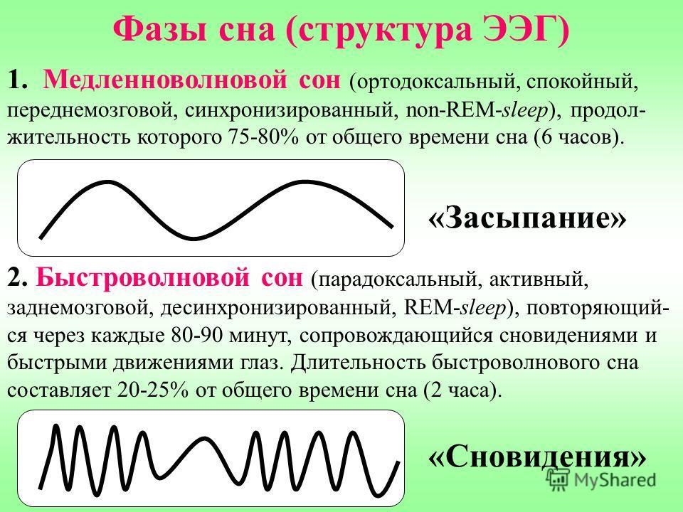 Фазы сна (структура ЭЭГ) 1. Медленноволновой сон (ортодоксальный, спокойный, переднемозговой, синхронизированный, non-REM-sleep), продол- жительность которого 75-80% от общего времени сна (6 часов). 2. Быстроволновой сон (парадоксальный, активный, за