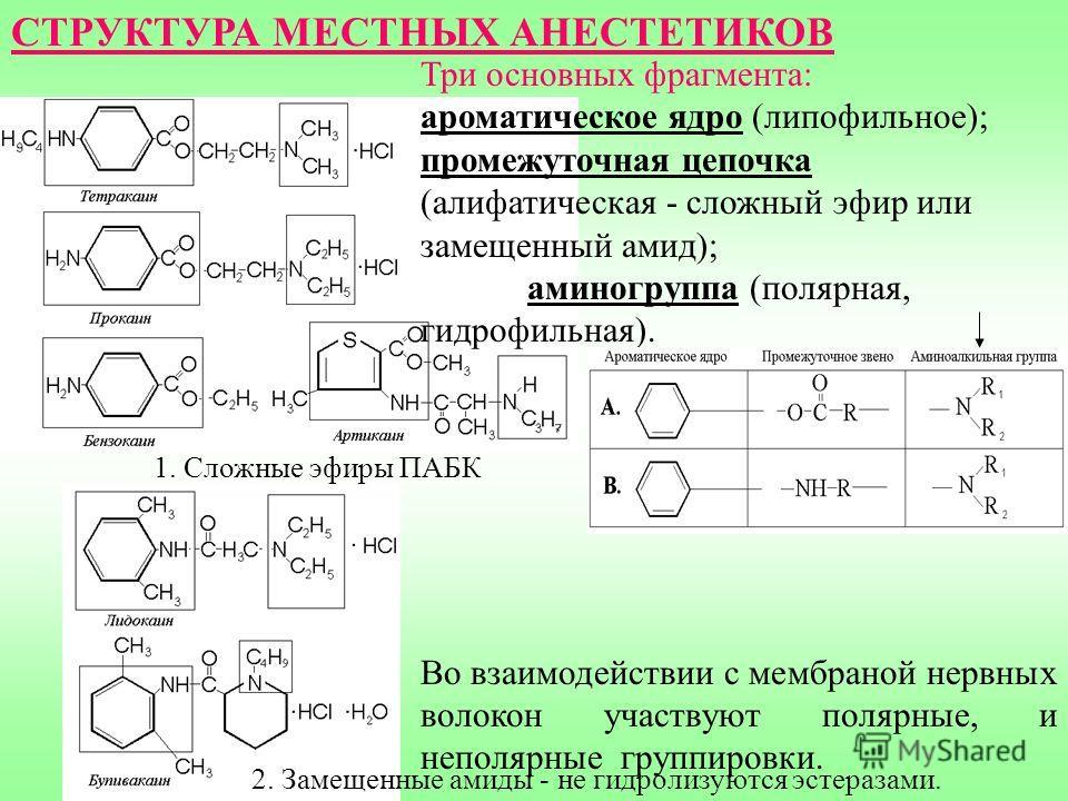2. Замещенные амиды - не гидролизуются эстеразами. 1. Сложные эфиры ПАБК Три основных фрагмента: ароматическое ядро (липофильное); промежуточная цепочка (алифатическая - сложный эфир или замещенный амид); аминогруппа (полярная, гидрофильная). Во взаи