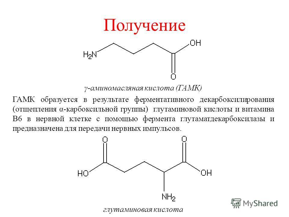 Получение γ-аминомасляная кислота (ГАМК) ГАМК образуется в результате ферментативного декарбоксилирования (отщепления α-карбоксильной группы) глутаминовой кислоты и витамина В6 в нервной клетке с помощью фермента глутаматдекарбоксилазы и предназначен