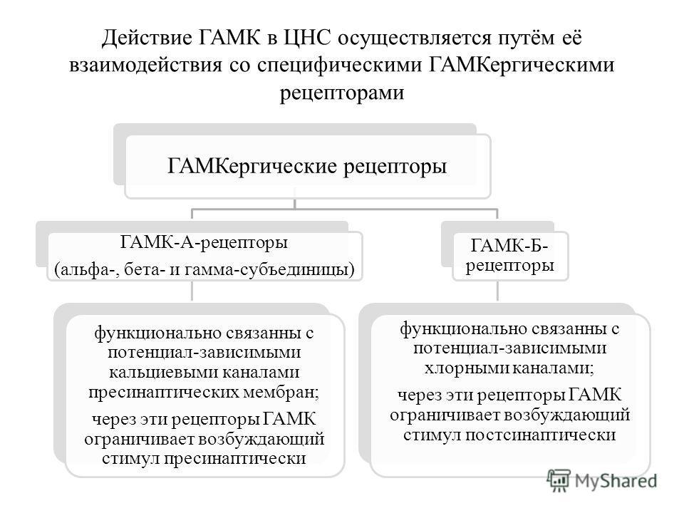 Действие ГАМК в ЦНС осуществляется путём её взаимодействия со специфическими ГАМКергическими рецепторами ГАМКергические рецепторы ГАМК-A-рецепторы (альфа-, бета- и гамма-субъединицы) функционально связанны с потенциал-зависимыми кальциевыми каналами