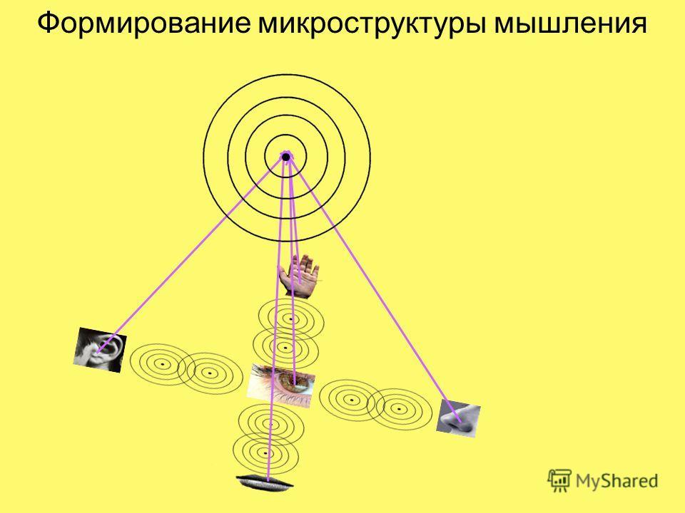Формирование микроструктуры мышления