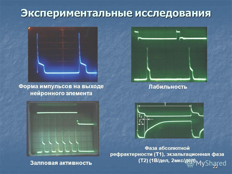 22 Экспериментальные исследования T1T1 T2T2 T Форма импульсов на выходе нейронного элемента Лабильность Залповая активность Фаза абсолютной рефрактерности (Т1), экзальтационная фаза (T2) (1В/дел, 2мкс/дел)