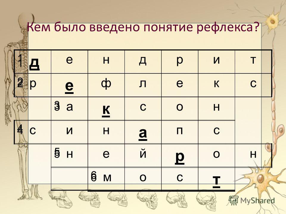 Кем было введено понятие рефлекса? 1 д ендрит 2 р е флекс 3 а к сон 4 син а пс 5 ней р он 6 мос т 1 2 3 4 5 6