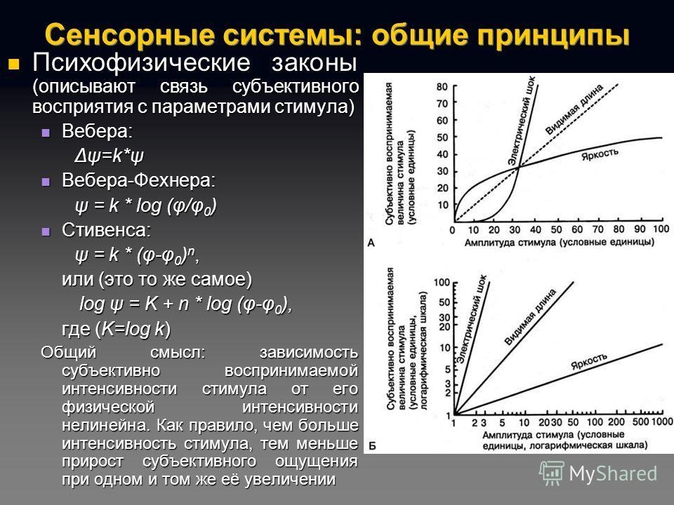 Сенсорные системы: общие принципы Психофизические законы (описывают связь субъективного восприятия с параметрами стимула) Психофизические законы (описывают связь субъективного восприятия с параметрами стимула) Вебера: Вебера: Δψ=k*ψ Вебера-Фехнера: В