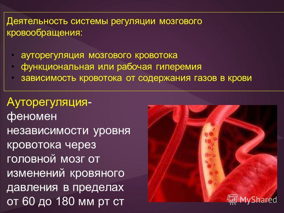 Деятельность системы регуляции мозгового кровообращения: ауторегуляция мозгового кровотока функциональная или рабочая гиперемия зависимость кровотока от содержания газов в крови Ауторегуляция- феномен независимости уровня кровотока через головной моз
