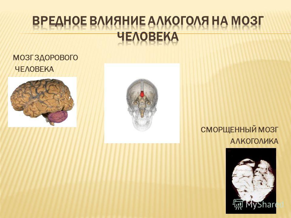 Данные Ф.Э. Шереги, М.К. Горшков. Молодёжь России: социологический портрет. ЦСПиМ, 2010г.