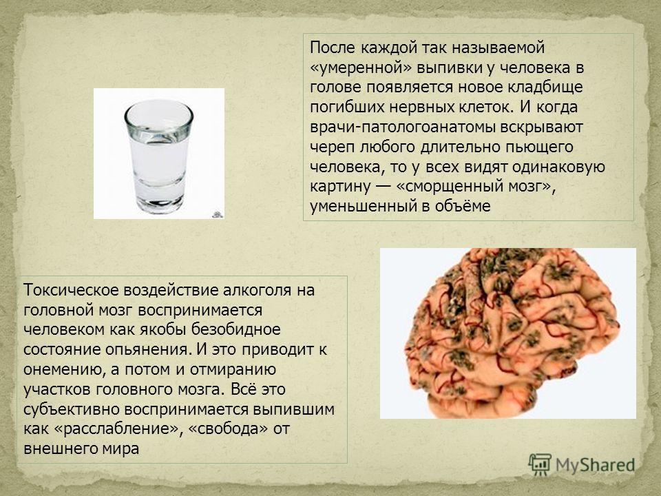 После каждой так называемой «умеренной» выпивки у человека в голове появляется новое кладбище погибших нервных клеток. И когда врачи-патологоанатомы вскрывают череп любого длительно пьющего человека, то у всех видят одинаковую картину «сморщенный моз