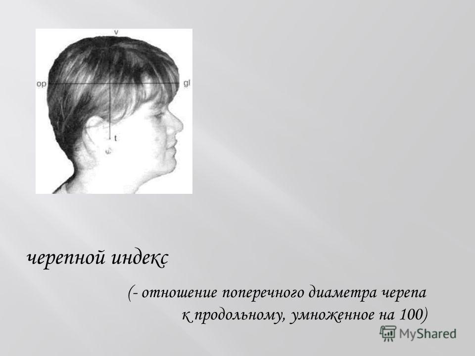 черепной индекс (- отношение поперечного диаметра черепа к продольному, умноженное на 100)