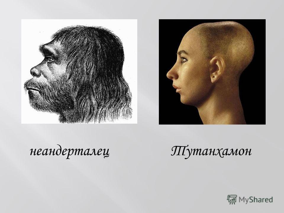 неандерталец Тутанхамон
