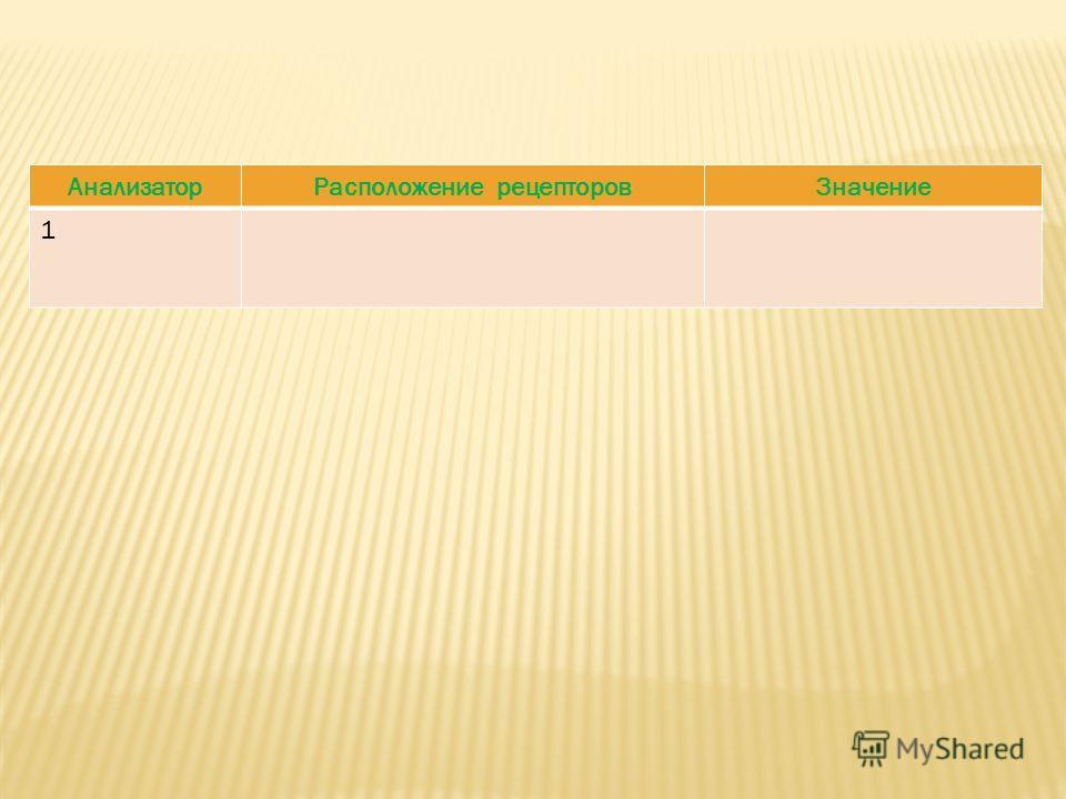 АнализаторРасположение рецепторовЗначение 1
