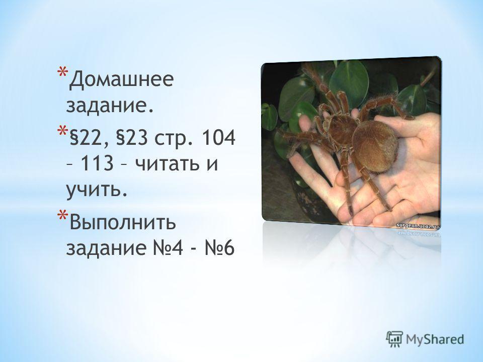 * Домашнее задание. * §22, §23 стр. 104 – 113 – читать и учить. * Выполнить задание 4 - 6