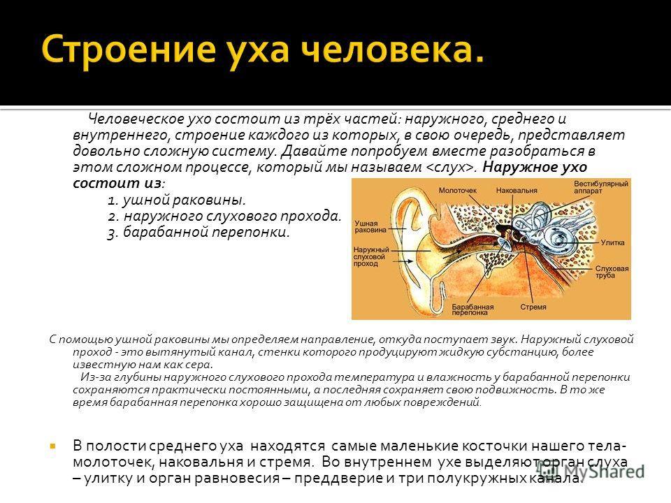 Человеческое ухо состоит из трёх частей: наружного, среднего и внутреннего, строение каждого из которых, в свою очередь, представляет довольно сложную систему. Давайте попробуем вместе разобраться в этом сложном процессе, который мы называем. Наружно