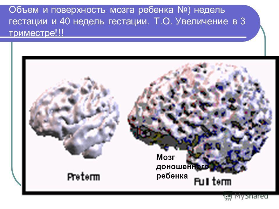 Объем и поверхность мозга ребенка ) недель гестации и 40 недель гестации. Т.О. Увеличение в 3 триместре!!! Мозг доношенного ребенка
